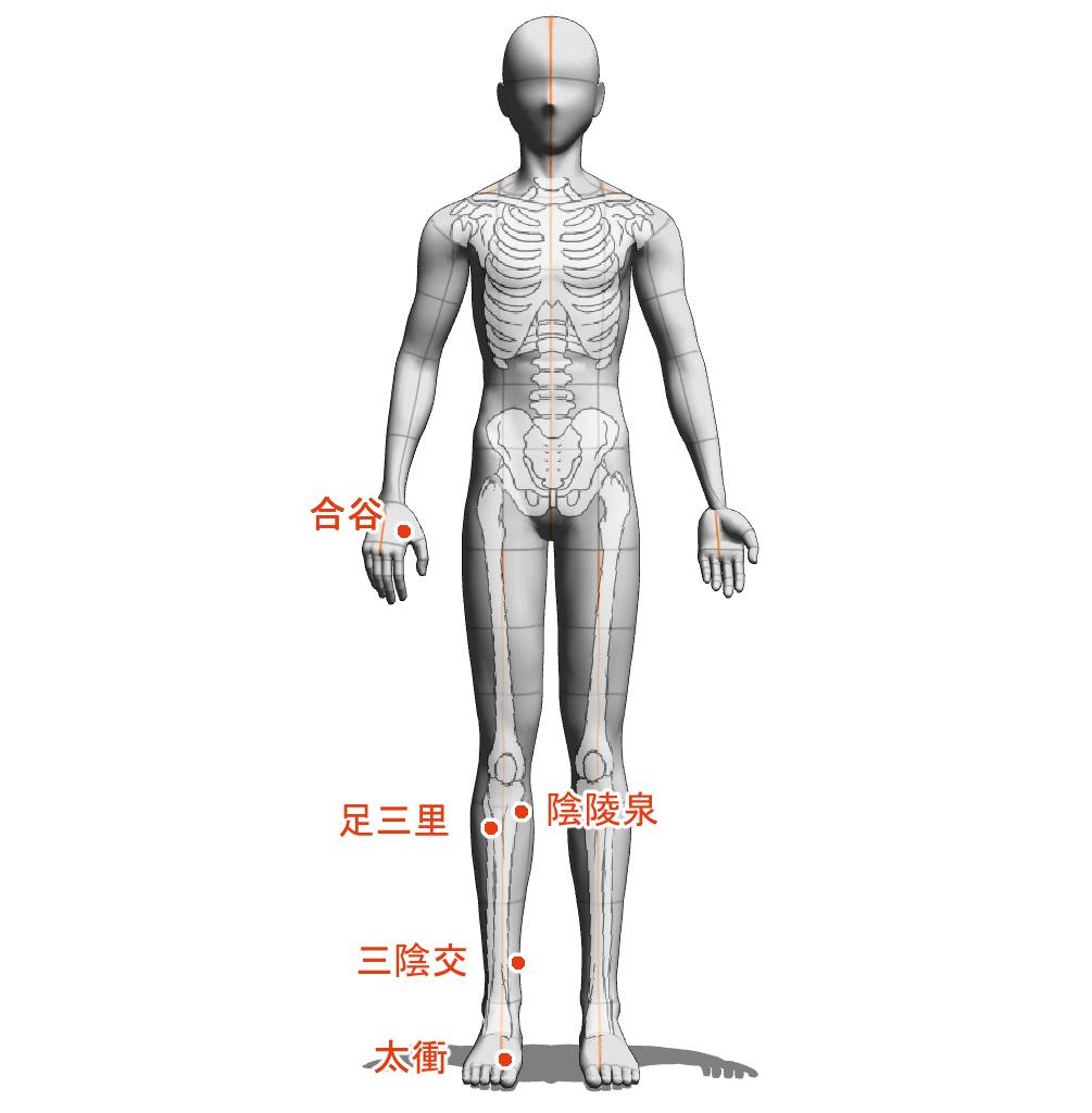 湿熱 ツボ 経穴 経絡