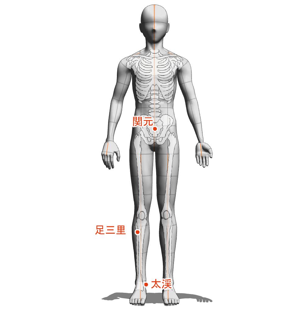 陽虚 ツボ 経絡 経穴