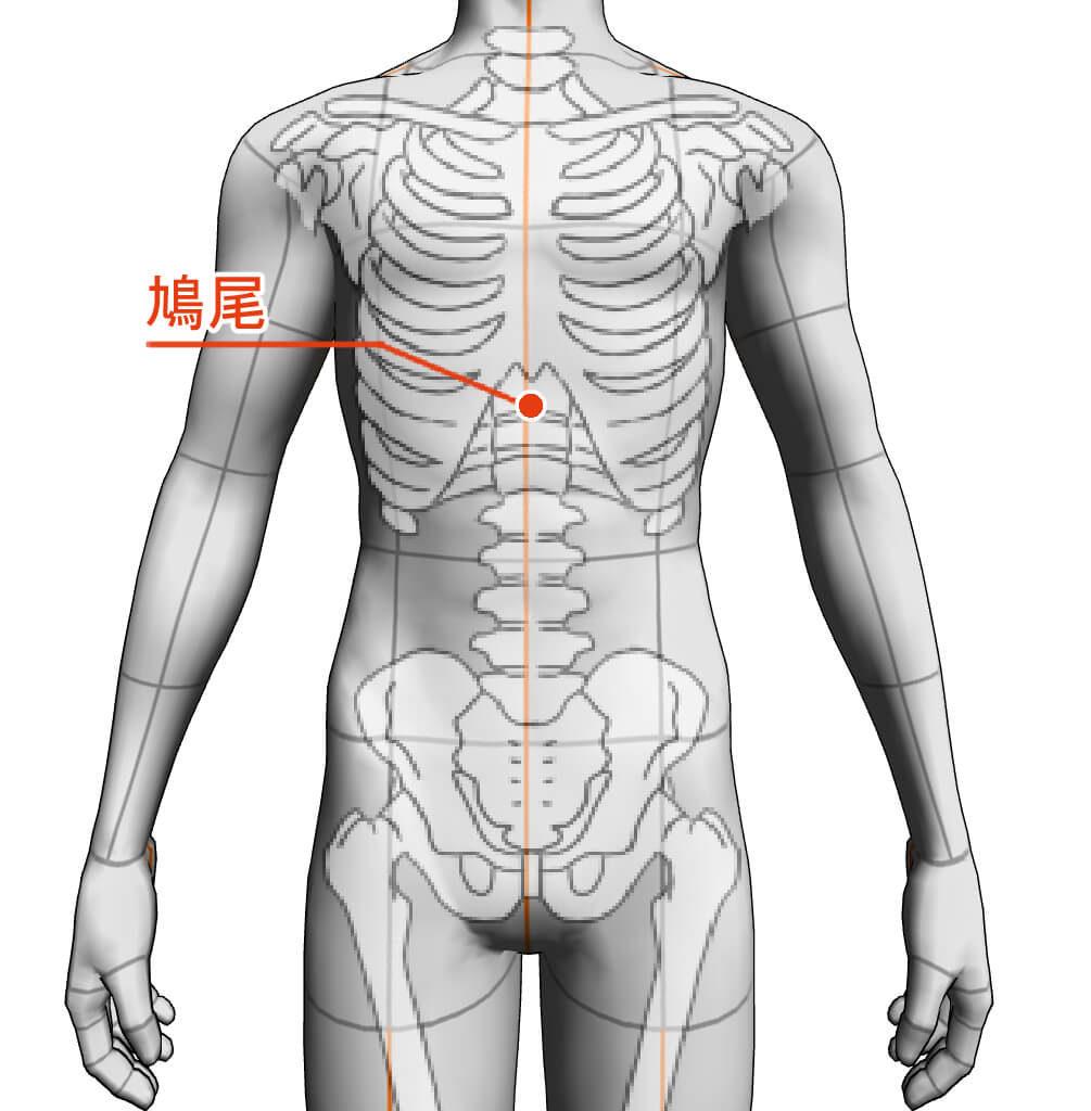 鳩尾 ツボ 経絡 経穴