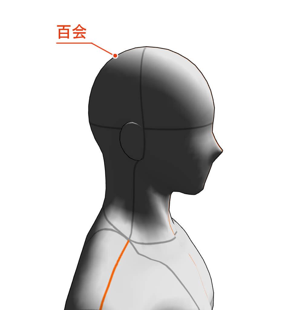 百会 ツボ 経絡 経穴