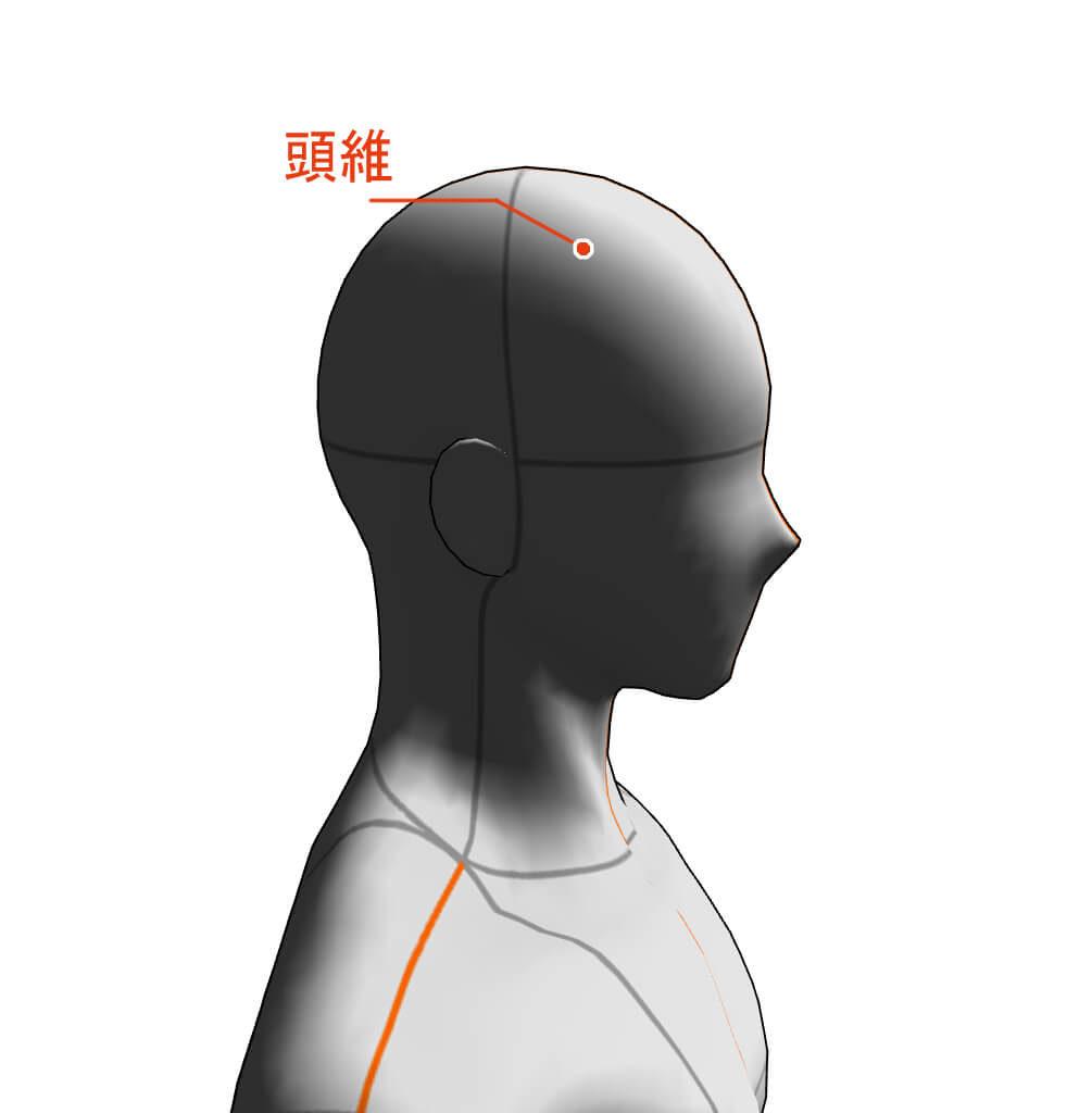 頭維 ツボ 経絡 経穴