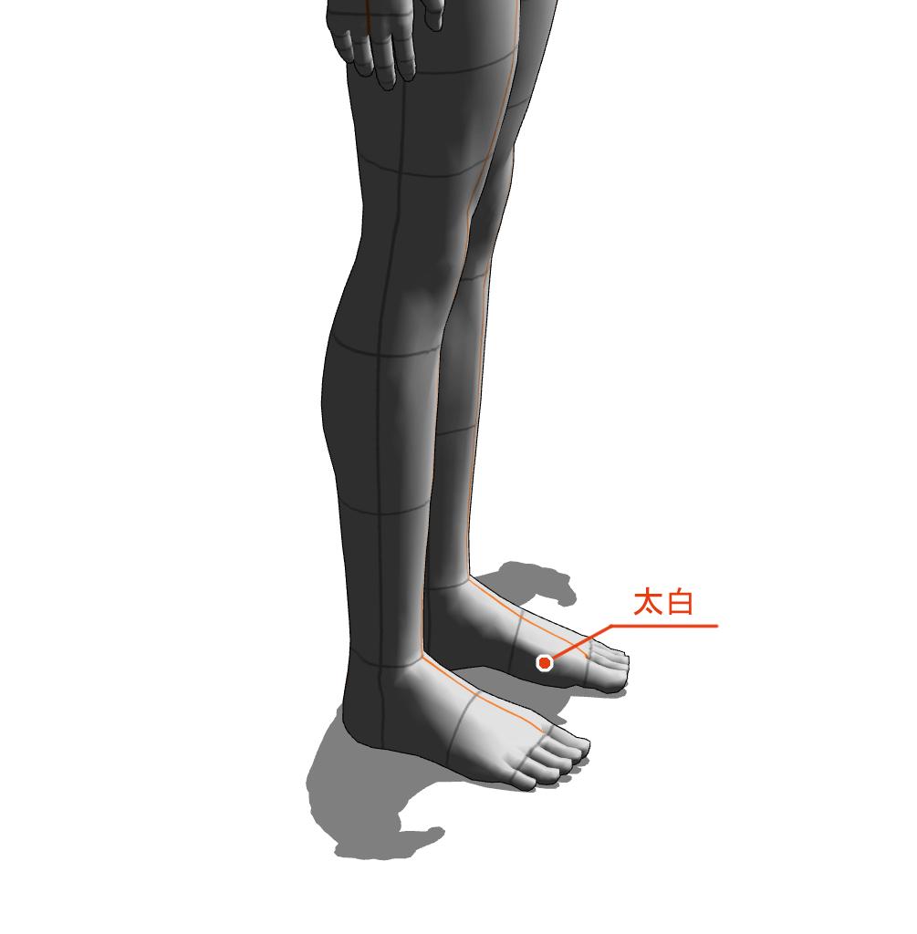 太白 ツボ 経絡 経穴