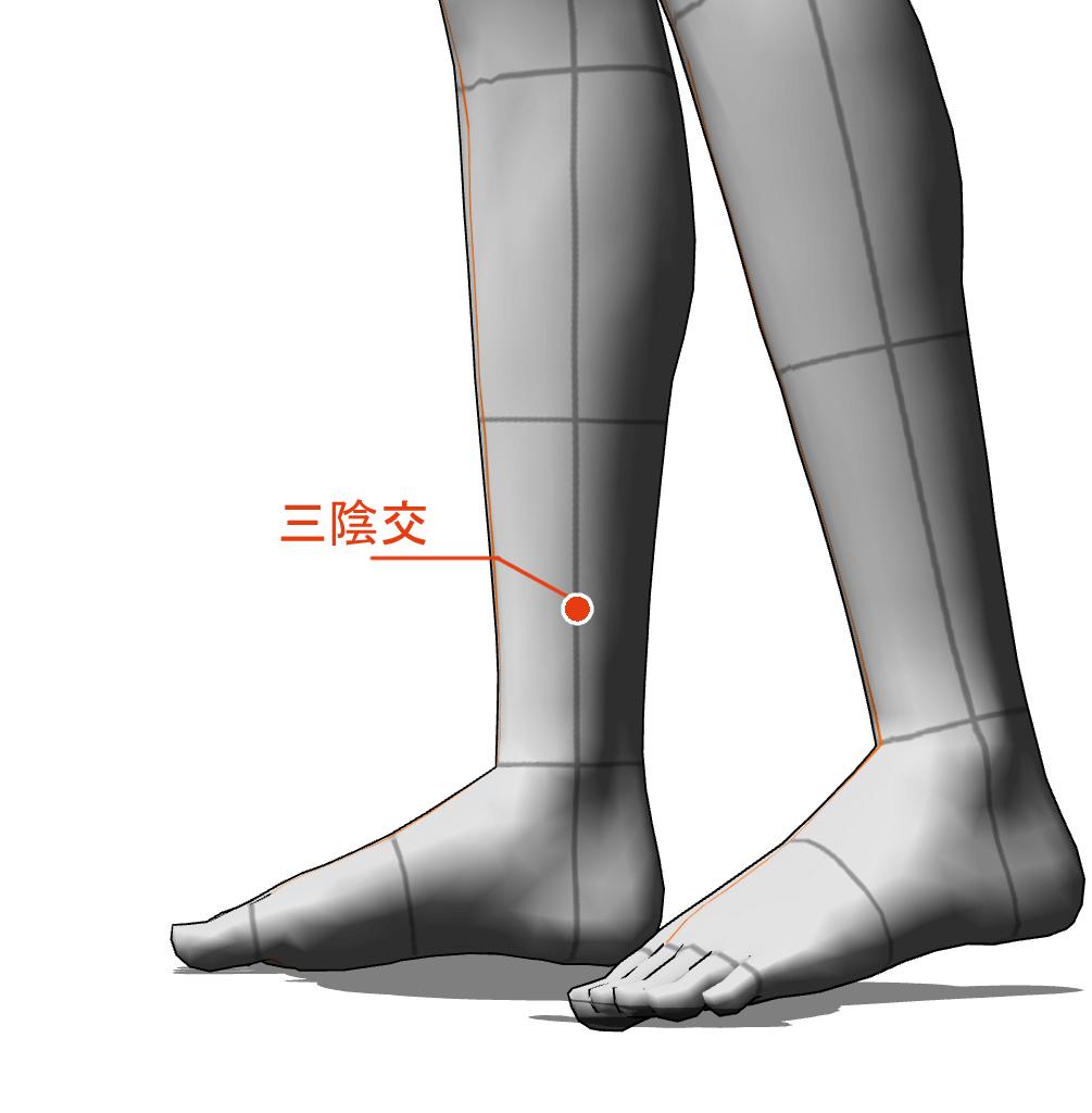 三陰交 ツボ 経絡 経穴