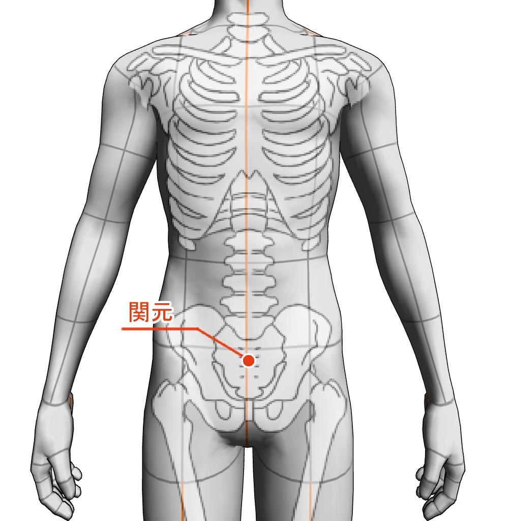 関元 ツボ 経絡 経穴