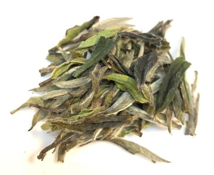 白牡丹 茶葉