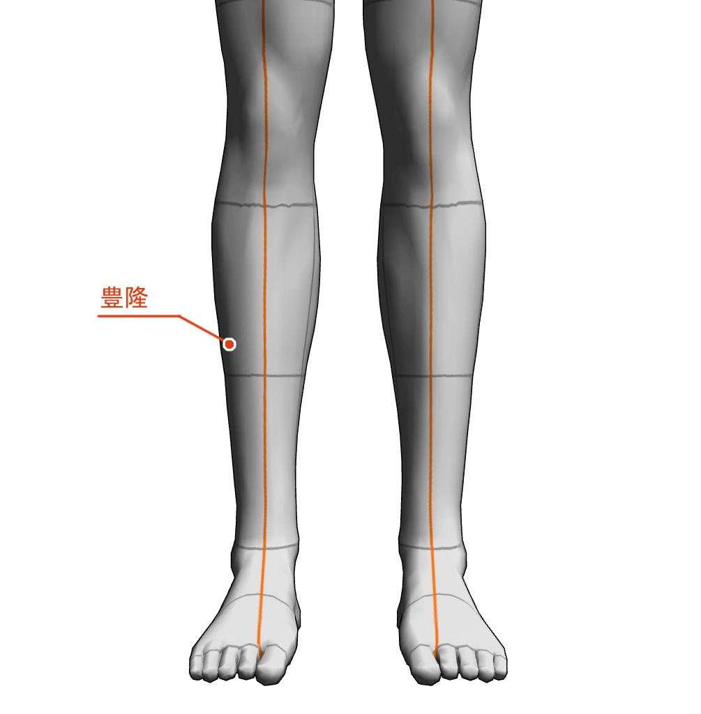 豊隆 ツボ 経絡 経穴