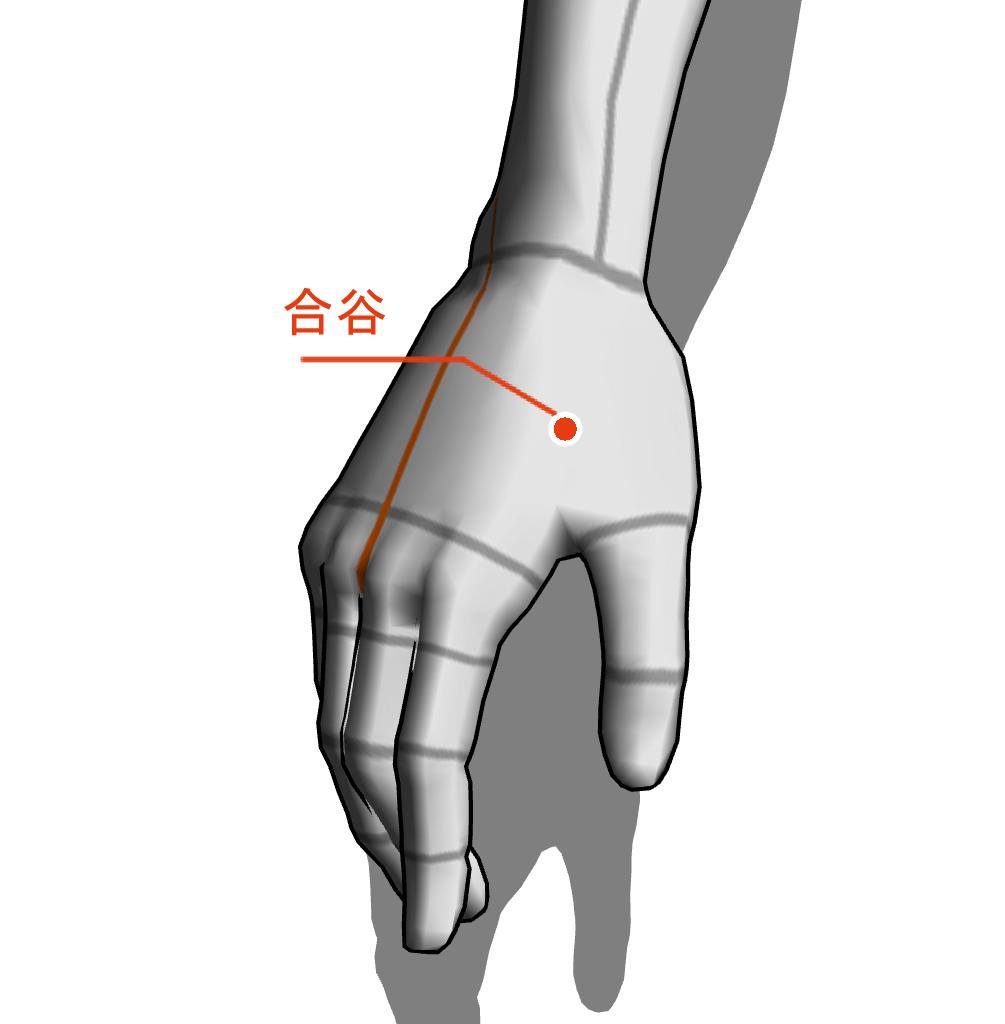 合谷 ツボ 経絡 経穴