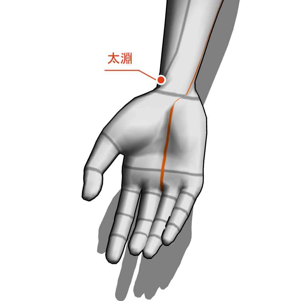 太淵 ツボ 経絡 経穴