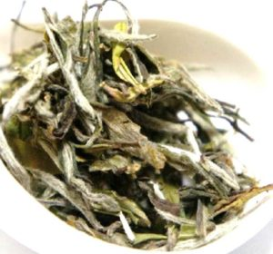 白牡丹 白茶 中国茶