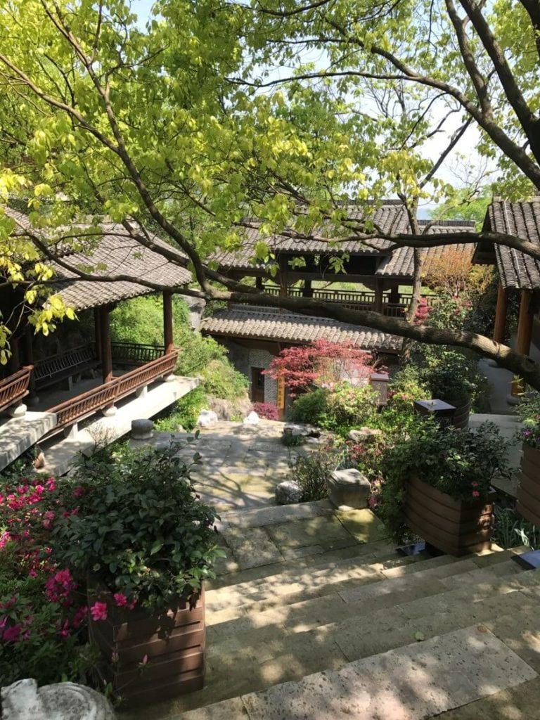 杭州 龍井 茶葉博物館