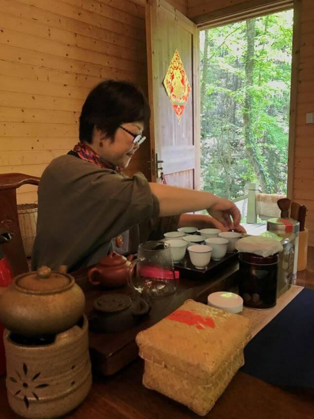 杭州 龍井 茶畑 有機 茶葉