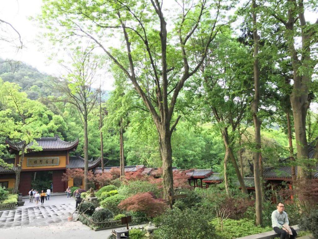 杭州 龍井 永福禅寺 茶館