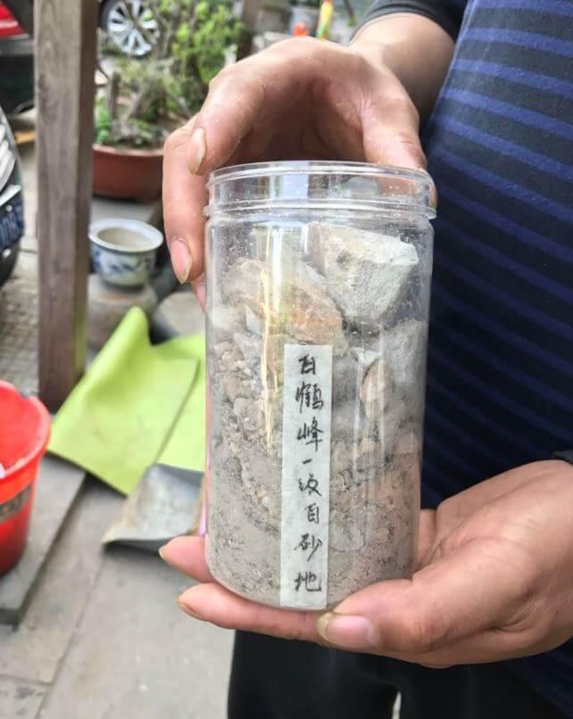 杭州 龍井 茶畑 土壌