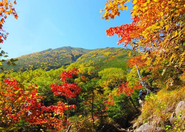 紅葉狩り 秋 霜降 紅葉 晩秋