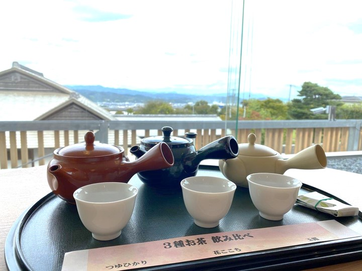ふじのくに茶の都ミュージアム 静岡県 日本茶 飲み比べ つゆひかり、花ここち、玉露